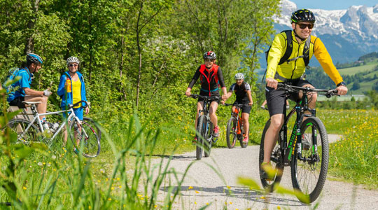 Cycle tour - Giant Forests